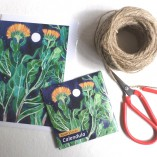 Gabby Malpas Art card and organic seed packet