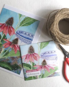 Gabby Malpas Art card and organic seed packet echinacea