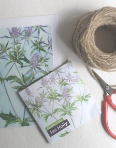 Gabby Malpas Art card and organic seed packet Sea Holly