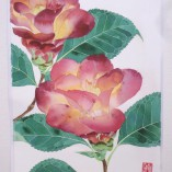 Camelia watercolour paper print by Gabby Malpas