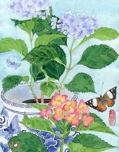 hydrangeas watercolour, pencil and gouache on Indian Khadi paper. Gabby Malpas print