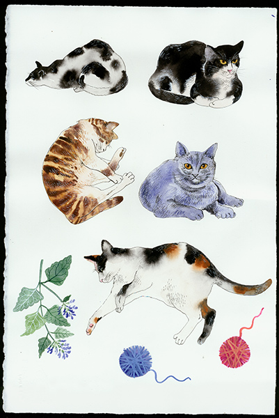 Gabby Malpas original watercolour painting: 'Catisfaction 2'