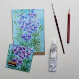 Seed packet by Gabby Malpas for Sarahs seeds Larkspur