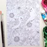 colouring in postcards set of 4 Gabby Malpas parrots and passionfruit