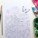 colouring in postcards set of 4 Gabby Malpas ranunculus and butterfly