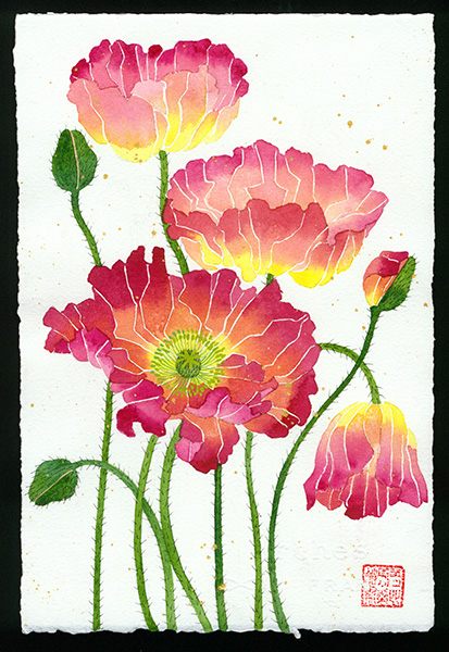 Poppies an A4 archival print from Gabby Malpas original watercolour of poppies