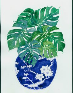 Gabby Malpas original painting; watercolour and gouache on paper monstera in ginger jar