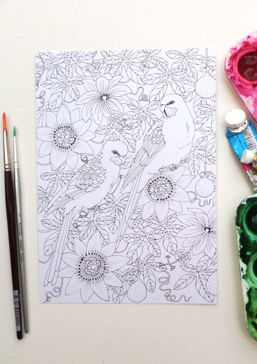 Colouring-in postcards: set of 4 designs, A5 size
