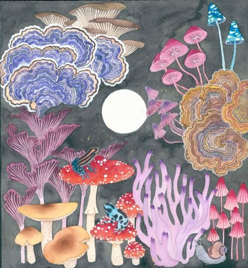image of mushrooms and poison arrow frogs Original painting watercolour and gouache on paper