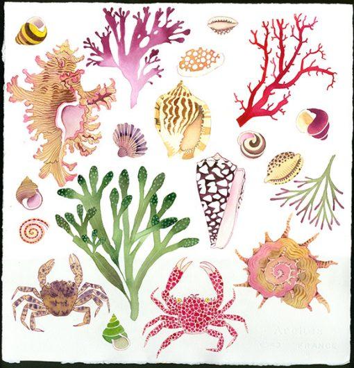 Gabby Malpas original watercolour painting: 'Seashore 2'
