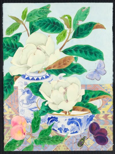Limited edition print on archival paper: Magnolia Grandiflora