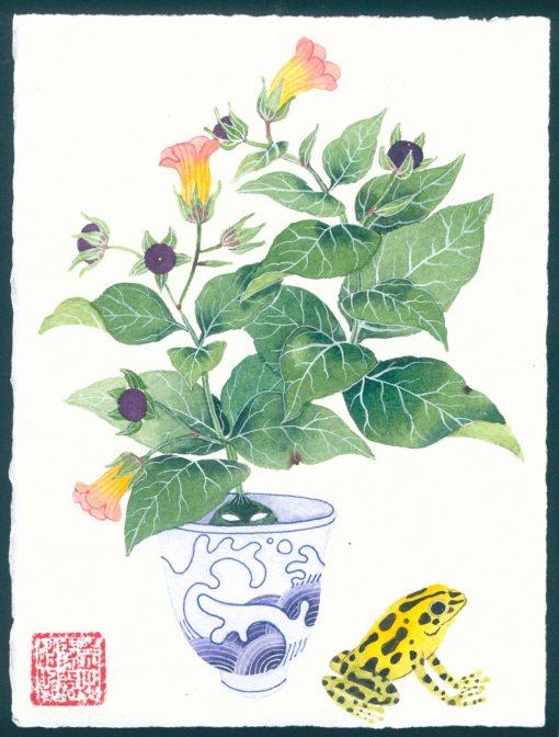 belladonna. original watercolor painting on paper