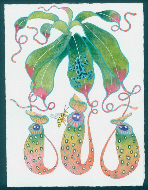 cursed pitcher plants. original watercolor painting on paper