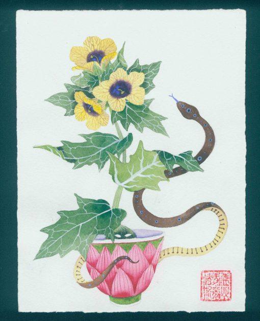 Henbane belladonna. original watercolor painting on paper