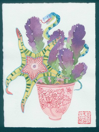 starfish cactus 1. original watercolor painting on paper